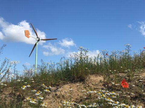 groene windmolen en wilde bloemen